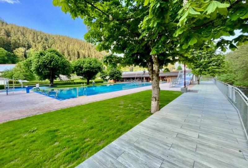 Schwimmen See Berge Wald
