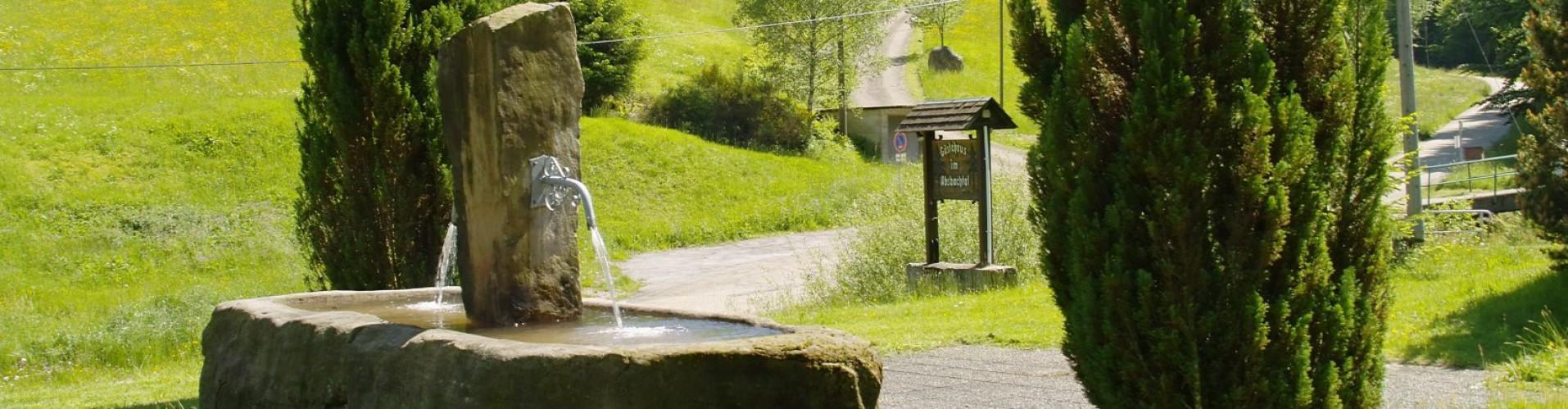 Natur rund um Gaestehaus Absbachtal